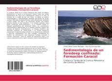 Buchcover von Sedimentología de un foredeep confinado: Formación Caracol