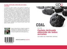 Обложка Carbón Activado obtenido de lodos avícolas