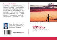 Bookcover of Índices de Confiabilidad