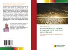 Aproveitamento da lama de lavagem do minério de ferro: estudo de caso的封面