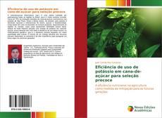 Borítókép a  Eficiência de uso de potássio em cana-de-açúcar para seleção precoce - hoz
