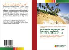 Bookcover of A situação ambiental dos bares nas praias da rodovia José Sarney – SE