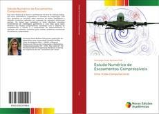 Обложка Estudo Numérico de Escoamentos Compressíveis