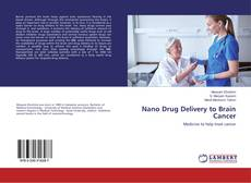 Обложка Nano Drug Delivery to Brain Cancer