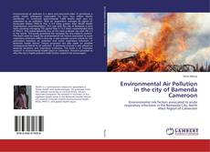 Bookcover of Environmental Air Pollution in the city of Bamenda Cameroon
