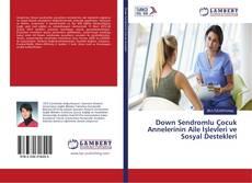 Down Sendromlu Çocuk Annelerinin Aile İşlevleri ve Sosyal Destekleri kitap kapağı
