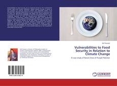 Vulnerabilities to Food Security in Relation to Climate Change kitap kapağı