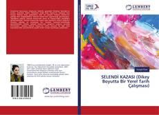 Bookcover of SELENDİ KAZASI (Dikey Boyutta Bir Yerel Tarih Çalışması)