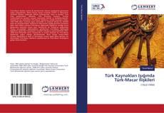 Türk Kaynakları Işığında Türk-Macar İlişkileri kitap kapağı