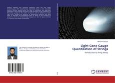 Bookcover of Light Cone Gauge Quantization of Strings