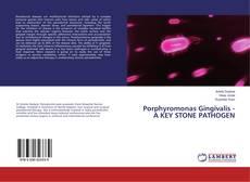 Bookcover of Porphyromonas Gingivalis - A KEY STONE PATHOGEN