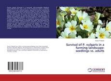 Bookcover of Survival of P. vulgaris in a farming landscape: seedlings vs. adults