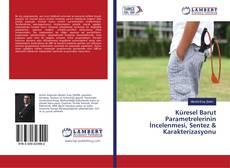 Portada del libro de Küresel Barut Parametrelerinin İncelenmesi, Sentez & Karakterizasyonu