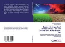 Portada del libro de Economic impacts of climate change on Teff production, East Shewa - ETH