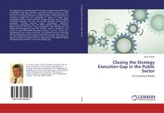 Capa do livro de Closing the Strategy Execution Gap in the Public Sector