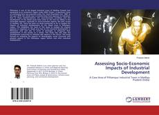 Bookcover of Assessing Socio-Economic Impacts of Industrial Development