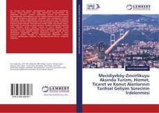 Bookcover of Mecidiyeköy-Zincirlikuyu Aksında Turizm, Hizmet, Ticaret ve Konut Alanlarının Tarihsel Gelişim Sürecinin İrdelenmesi
