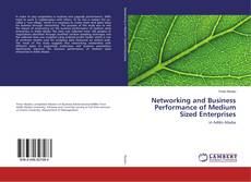 Portada del libro de Networking and Business Performance of Medium Sized Enterprises