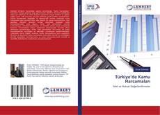 Türkiye'de Kamu Harcamaları kitap kapağı