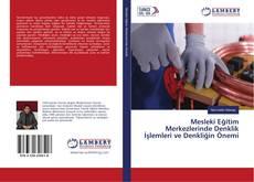 Mesleki Eğitim Merkezlerinde Denklik İşlemleri ve Denkliğin Önemi kitap kapağı