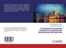 Обложка Совершенствование процесса управления трудовыми ресурсами