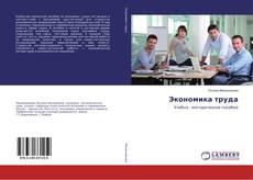 Экономика труда kitap kapağı