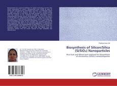 Couverture de Biosynthesis of Silicon/Silica (Si/SiO₂) Nanoparticles