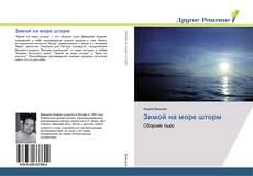 Bookcover of Зимой на море шторм
