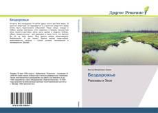 Бездорожье kitap kapağı