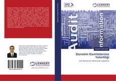 Bookcover of Denetim Komitelerinin Yeterliliği
