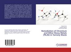 Bookcover of Remediation of Chromium and Other Heavy Metals (Pb,Ni) in Tannery Waste