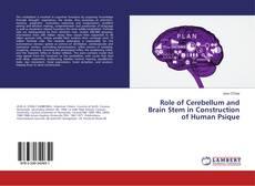 Buchcover von Role of Cerebellum and Brain Stem in Construction of Human Psique