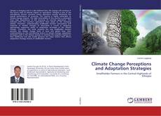 Bookcover of Climate Change Perceptions and Adaptation Strategies