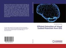 Buchcover von Efficient Extraction of Visual Evoked Potentials from EEG