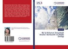 Bir İş Kolunun Sosyolojik Analizi: Bankacılık ve Niğde Örneği kitap kapağı