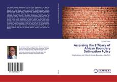 Copertina di Assessing the Efficacy of African Boundary Delineation Policy