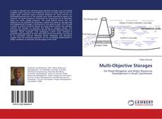 Bookcover of Multi-Objective Storages