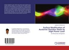 Bookcover of Surface Modification of Austenite Stainless Steels by High Power Laser