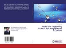 Bookcover of Molecular Engineering through Self Assembling of β-Peptides