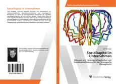 Bookcover of Sozialkapital in Unternehmen