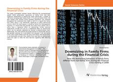 Bookcover of Downsizing in Family Firms during the Financial Crisis