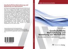 Buchcover von Gesellschaftliche Wahrnehmung und Bewertung von Meritokratie