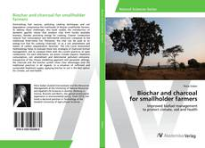Buchcover von Biochar and charcoal for smallholder farmers
