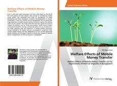 Welfare Effects of Mobile Money Transfer kitap kapağı