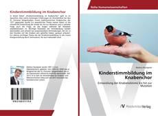Portada del libro de Kinderstimmbildung im Knabenchor