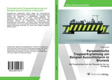 Parametrische Tragwerksplanung am Beispiel Aussichtsturm in Bruneck的封面