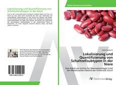 Portada del libro de Lokalisierung und Quantifizierung von Schaltzellsubtypen in der Niere