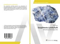 Bookcover of Gesplitterte Landschaft