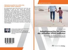Bookcover of Adoptionsrechte im Lichte der aktuellen VfGH Judikatur