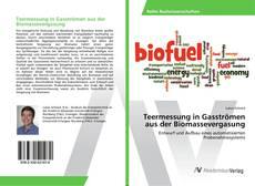 Teermessung in Gasströmen aus der Biomassevergasung的封面